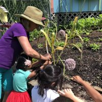 Summer Discovery Program- Gardening