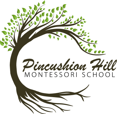 Pincushion Hill Montessori Schcool